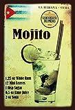 FS Alkohol Mojito Rezept Blechschild Schild gewölbt Metal