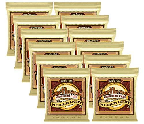 12 Sets Bulk Ernie Ball Earthwood Medium-Light Gauge 80/20 Bronze Acoustic Guitar Strings 2003