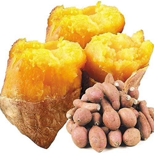 国華園 種子島産 安納芋 小芋10kg 1組
