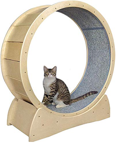 Katzenspielzeug Runder Laufband, Stille Spinner Cat Fitness Cat Spielzeug Laufband Mit Sport Gewichtsverlustgerät