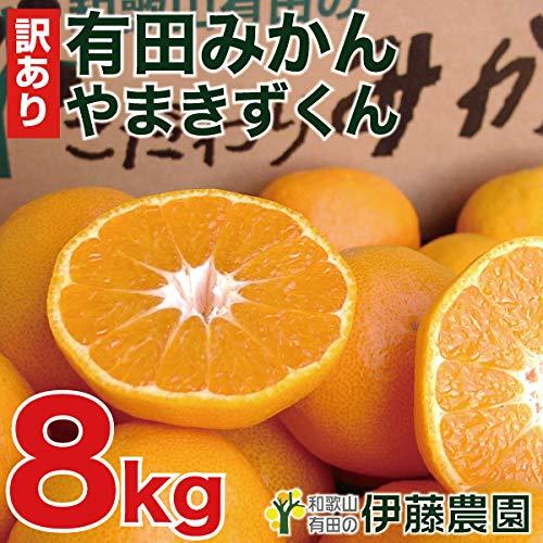 伊藤農園 有田みかん 訳あり 傷有り サイズ不選別 3L 2L L S SS 8kg ミカン家庭用 果物 柑橘 和歌山