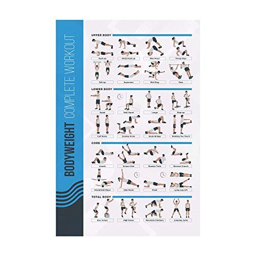 Affiche D'Exercices d'Entraînement Fitness FitMate, Routine D'Entraînement De Musculation Sans Matériel, Poster Décoration De Salle De Gym, Guide D'Entraînement (42 x 63,5 cm)