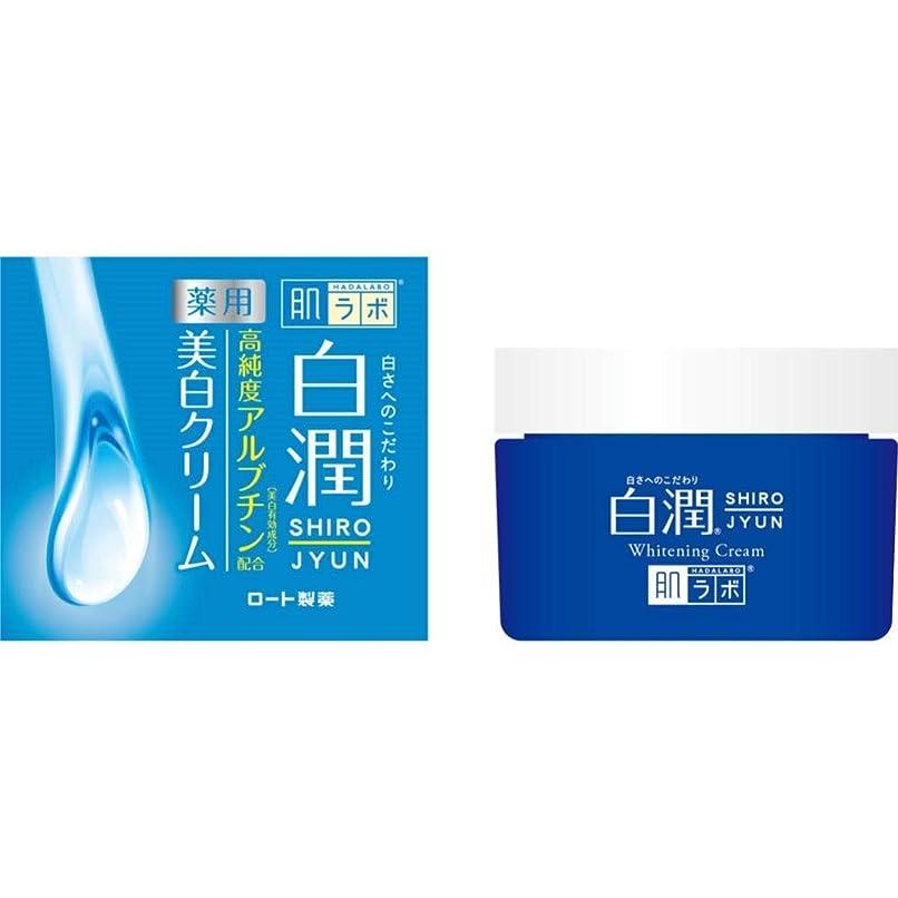 マネージャー現在促進する【ロート製薬】肌研 白潤薬用美白クリーム 50g(医薬部外品) ×3個セット