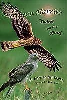 """Northern Harrier, Living on the Wing"" Wildlife Video DVD Birds of Prey Raptors Hawks"