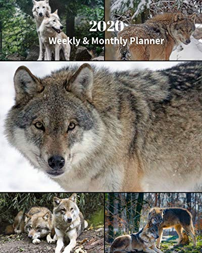 2020 Weekly and Monthly Planner: Wolves Collage-Nature - Monthly Calendar with U.S./UK/ Canadian/Christian/Jewish/Muslim Holidays– Calendar in Review/Notes 8 x 10 in.-Wolf Animals Wildlife