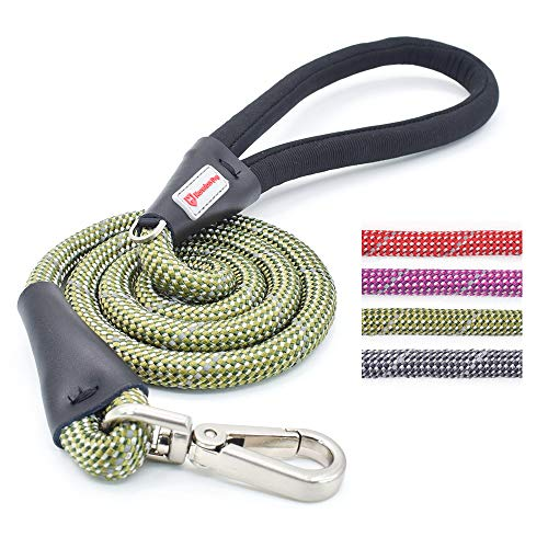 KLCW Marvelous Medium Dog Leash Dog Lead, 4 Feet...