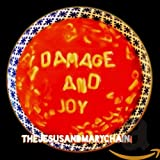Songtexte von The Jesus and Mary Chain - Damage and Joy