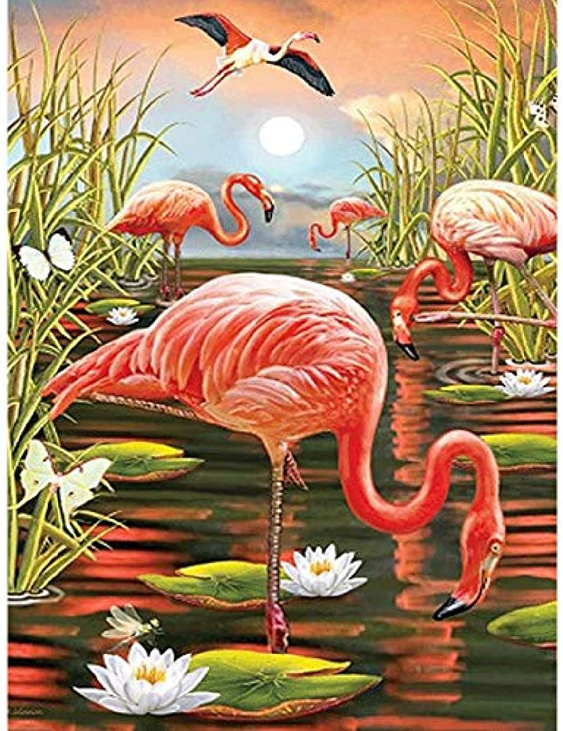 DIY Oil Paint by Number Kit for Adults Beginner 16x20 Inch - Flamingos,Drawing with Brushes Living Room Decor Decorations Gifts (Framed)