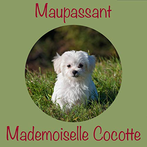 Mademoiselle Cocotte cover art