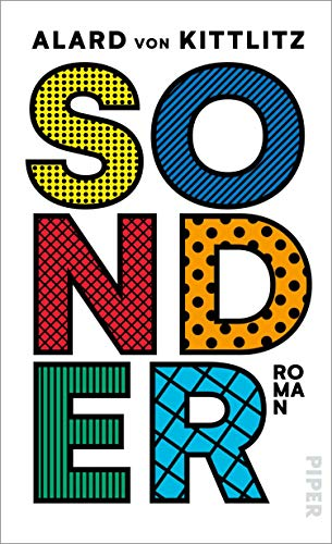 Sonder: Roman (German Edition)
