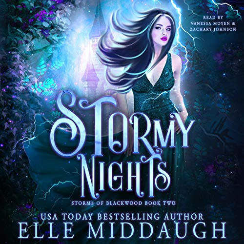 Stormy Nights audiobook cover art