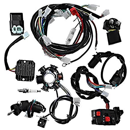 Amazon.com: Electrics Wiring Harness Loom Kit CDI Magneto Stator for GY6  125cc 150cc ATV Quad GO Kart: Automotive | Gy6 150 Wiring Harness |  | Amazon.com