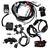 Complete Wiring Harness Electrics Wire Loom Kit CDI Rectifier Ignition Coil Magneto Stator Replacement for GY6 125cc 150cc ATV Quad Go Kart Scooter