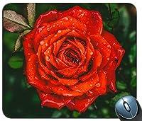 水滴と赤いバラの花の写真をアップパーソナライズされた長方形のマウスパッド、印刷された滑り止めゴム快適なカスタマイズされたコンピューターマウスパッドマウスマットマウスパッド