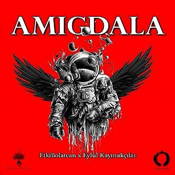Amigdala (feat. Eylül Kaymakçılar)