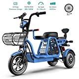 3 Wheel Electric Bikes for Adult 500W Mountain Electric Scooter 48V 12'' Electric Bicycle with Electric Lock Fast Battery Charger for Home Shopping Use,Blue,15Ah