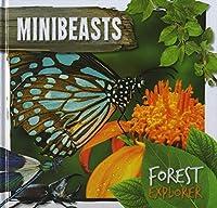 Minibeasts (Forest Explorer)