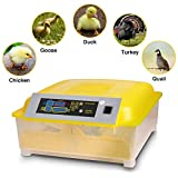 Noeler Egg Incubator Digital Automatic Incubators with Egg Turning,Chicken Duck Goose Quail Birds Fertile Eggs for Hatching (48 Egg Incubator)