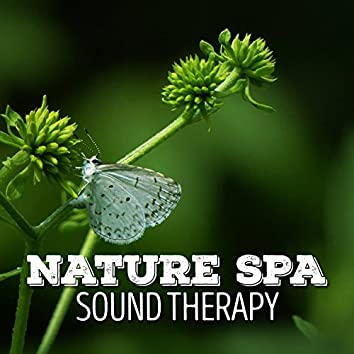 Nature Spa Sound Therapy