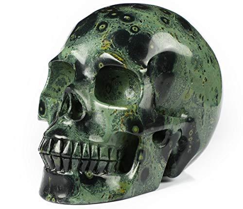 Skullis 5.0' Kambaba Jasper Crystal Skull, Hand Carved Gemstone Fine Art Sculpture, Reiki Healing Stone Statue.