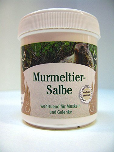 Murmeltier Salbe Dose 120 ml