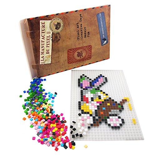 La Manufacture du Pixel – ¡Manualidad Pixel Art, Hobby Creativo, Mosaico, Diversión! – Has tu Propio Arte – Estaño de Colección – Juego de Marco y 900 Pixeles (Translúcido)
