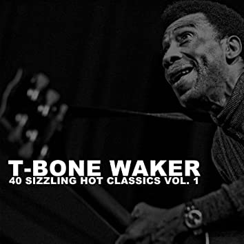 40 Sizzling Hot Classics, Vol. 1