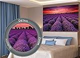 GREAT ART XXL Poster – Fotoposter Lavendel Feld –