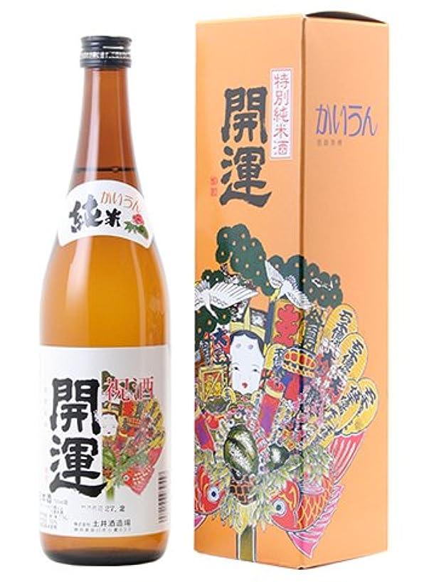 サイバースペース不変錫【日本酒】開運(かいうん) 特別純米 720ml