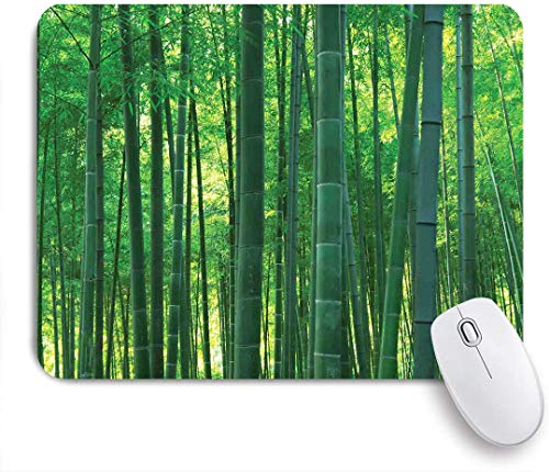 """JISMUCI Gaming Mouse Pads,Asian Green Wild Exotic Bamboo Print,Mouse Mats Non-Slip Rubber Base Mousepad for Laptop,Computer,Office 9.5""""x7.9"""""""
