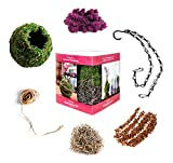 Super Moss 759834904328 Kokedama Kit, Orchid