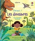 C'est quoi... Les dinosaures ?: Avec des rabats à soulever