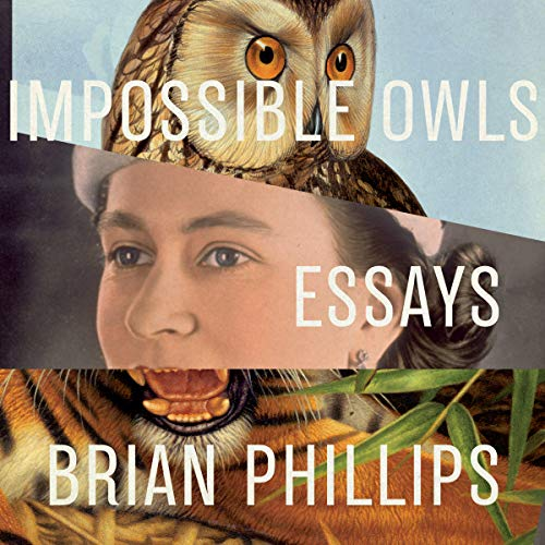 Impossible Owls audiobook cover art