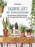 Saubere Luft mit Zimmerpflanzen: Die 50 besten Detox-Pflanzen für ein gesundes Raumklima. Basiert auf der NASA 'Clean Air Study' (German Edition)