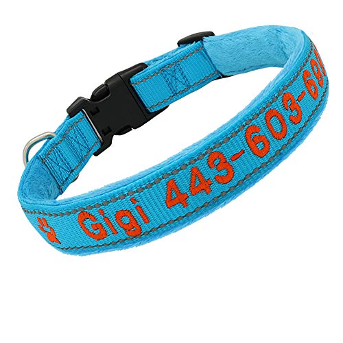 Didog Embroidered Custom Dog Collar, Soft Flannel Padded with Personalized Design, Reflective Collar with hot Colors for Small Medium Large Dogs, Blue