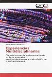 Experiencias Multidisciplinarias: Diagnóstico para la implementación de servicios integrales multidisciplinarios para la vinculación de la UAQ en Amealco