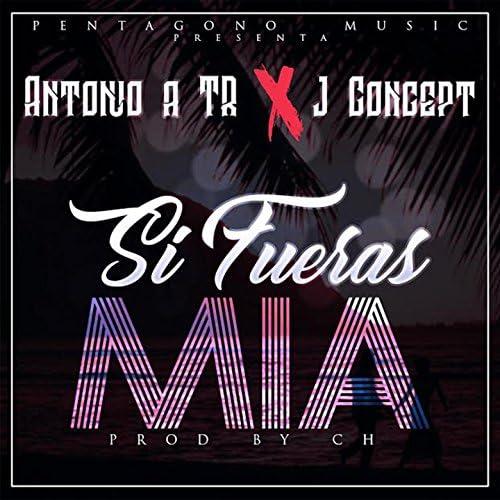 Ch Produciendo, Antonio ATR, J Concept