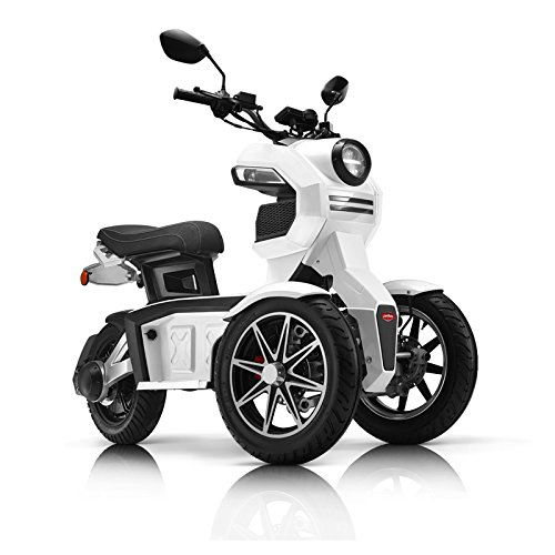 Doohan electrical tricycle dual front wheels