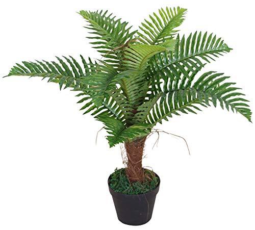 Decovego Palme Palmfarn Kunstpflanze Plastik Künstliche Pflanze 65cm
