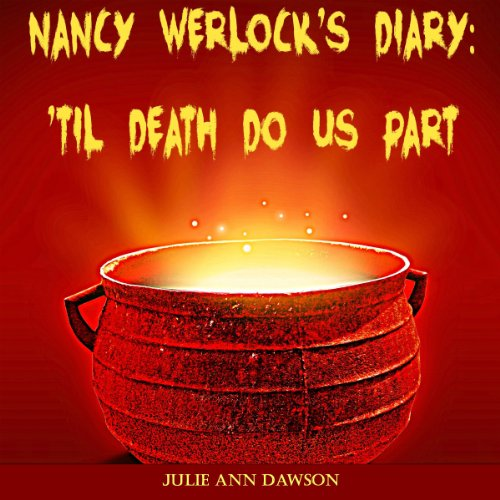 Nancy Werlock's Diary audiobook cover art