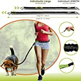 Joggingleine für Hunde von Nikkipet Verstellbarer, wasserabweisender Laufgürtel mit 2 Fächern & elastische, reflektierende 120 cm Leine & – Premium Flexi Jogging Hundeleine + Gürteltasche für große & mittlere Hunde - 6