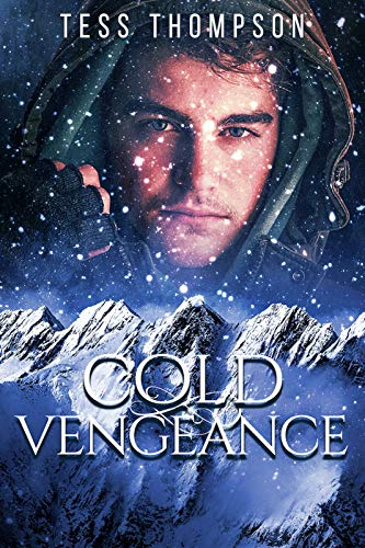 Book: Cold Vengeance (Angel Falls Series Book 3) by Tess Thompson