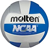 Molten Camp Volleyball (Blue/Silver/White, Official)