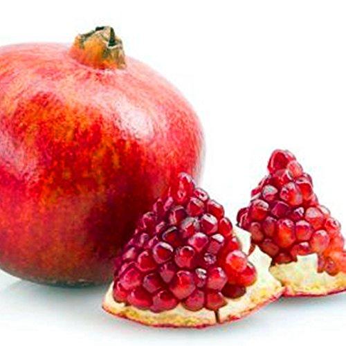 30 pcs/sac Goyave Graines délicieux Tropical graines de fruits en pot non transgéniques bonsaïs arbres fruitiers pour plantes de jardin à domicile