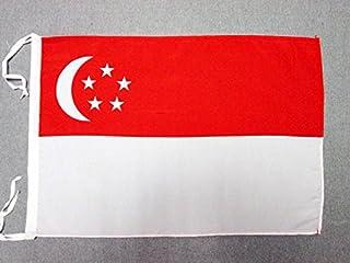 AZ FLAG Singapore Flag 18'' x 12'' Cords - Singaporean Small Flags 30 x 45cm - Banner 18x12 in