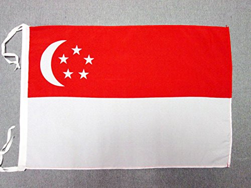 AZ FLAG Flagge Singapur 45x30cm mit Kordel - SINGAPURISCHE Fahne 30 x 45 cm - flaggen Top Qualität