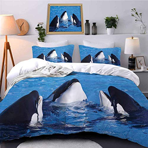 UNOSEKS LANZON Bedspreads Coverlet Three Orca Killer Whales Aquarium Swim Pacific Marine Sea and World Ocean Hotel Stitch Duvet Cover Set Minimalistic Design and Color - Queen Size
