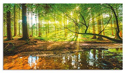Artland Spritzschutz Küche aus Alu für Herd Spüle 50x90 cm Küchenrückwand mit Motiv Natur Landschaft Wald Bäume Sonne Bach Landhaus Grün T9IO