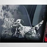 Pegatina de vinilo para coche, diseño de perro de caza con texto en inglés 'Setter on Board'