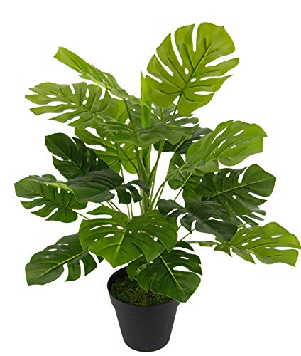 Flair Flower Zimmerpflanze Splitphilo Topf Monstera Kunst Seidenblumen Real Touch grün Kunstpflanzen künstliche Pflanzen Splitphilopflanze Dekopflanze groß 53 cm, 46x35 cm